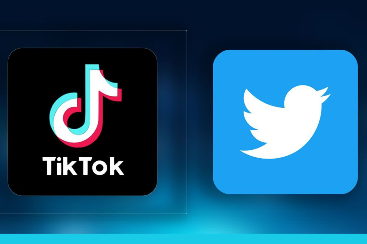 logo tiktok et twitter