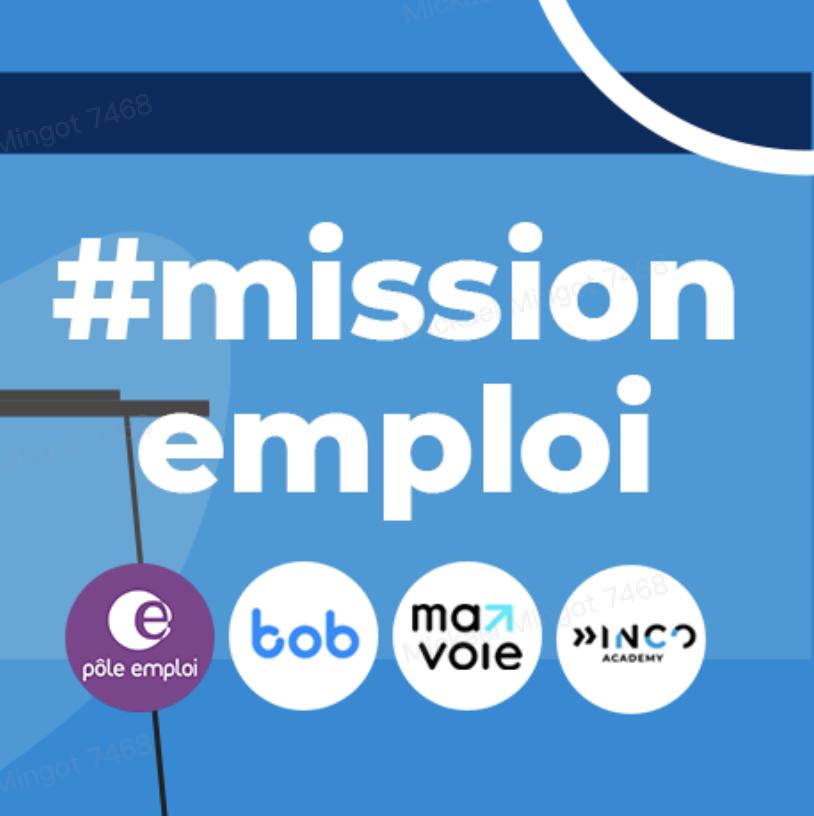 tiktok mission emploi